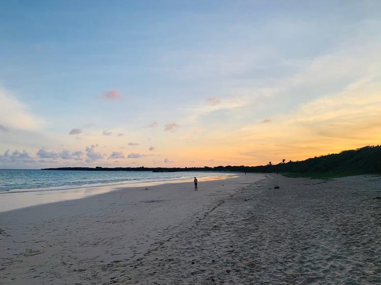 ブルータートル 浜辺2